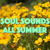 Soul Sounds All Summer by Various Artists