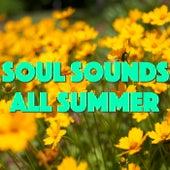 Soul Sounds All Summer von Various Artists