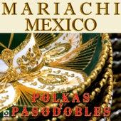 Polkas Y Pasodobles by Mariachi Mexico