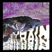When It Rain by Danny Brown
