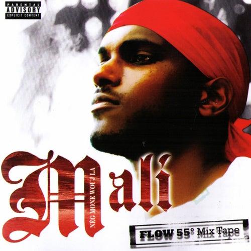 Flow 55 by Mali Music (Rap)