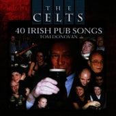 40 Irish Pub Songs by Tom Donovan