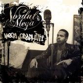 Megagraphitti by Vordul Mega