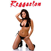 Reggaeton de Various Artists