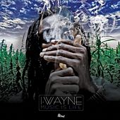 Music Is Life de I Wayne