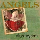 Angels de Skydiggers