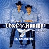 El Palomito by Voces Del Rancho