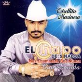 Mas Enamorado Que Nunca Con Banda de El Chapo De Sinaloa