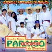 Paraiso Tropical by Paraiso Tropical