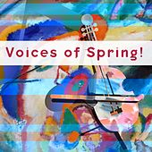 Voices of Spring! by Various Artists