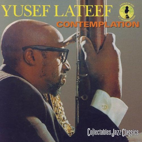 Yusef Lateef by Yusef Lateef