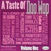 A Taste Of Doo Wop, Vol. 1 by Various Artists