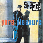Pure Pleasure de Shaggy