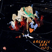 Organic Jam, Vol. 3 by Various Artists