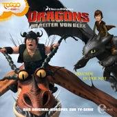 Folge 8: Freunde in der Not (Das Original-Hörspiel zur TV-Serie) von Dragons - Die Reiter von Berk