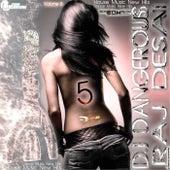 House Music New Hits, Dance Music New Hits, Volume 5 de DJ Dangerous Raj Desai