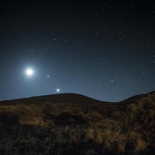 Venus Rising by Paul Speer