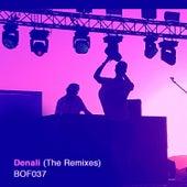 Denali (Remixes) von Life on Planets