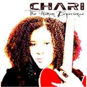 The Human Experience de Chari
