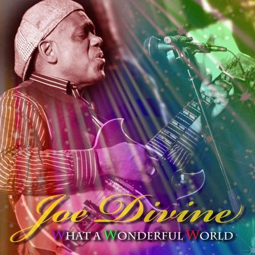 What a Wonderful World by Joe Divine