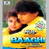 Baaghi (With Jhankar Beats) (Original Motion Picture Soundtrack) de Various Artists