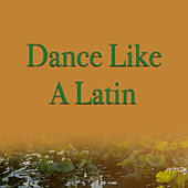 Dance Like A Latin de Various Artists