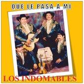 Que Le Pasa A Mi by Los Indomables
