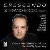 Crescendo by Stefano Secco