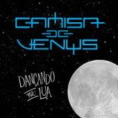 Dançando na Lua de Camisa de Vênus