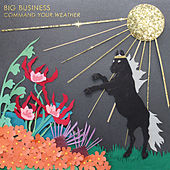 Blacker Holes by Big Business