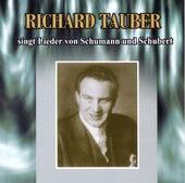 Seine Größten Erfolge by Wilhelm Furtwängler