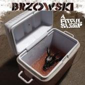 A Fitful Sleep by Brzowski