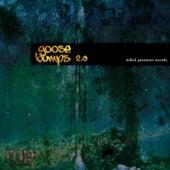 Goose Bumps 2.0 von Various Artists