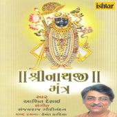 Shri Nathji Mantra by Ashit Desai