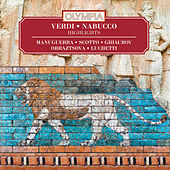 Verdi: Nabucco. Highlights von Various Artists