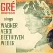 Wagner, Verdi, Bethoven & Weber by Gré Brouwenstein