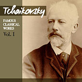 Tchaikovsky: Famous Classical Works, Vol. I von Ruggiero Ricci