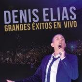 Grandes Éxitos en Vivo by Denis Elias