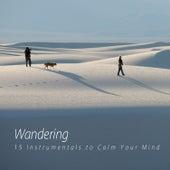 Wandering de Various Artists