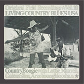 Living Country Blues USA Vol. 10 - Country Boogie by Various Artists