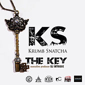The Key by Krumbsnatcha