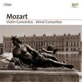 Violin Concertos - Wind Concertos Part: 7 by Various Artists