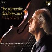 Romantic Double Bass Part: 1 by Kees de Visser
