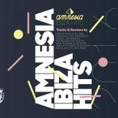 Amnesia Ibiza Hits 2016 de Various Artists