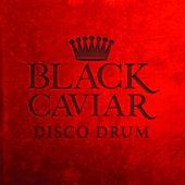 Disco Drum by Black Caviar