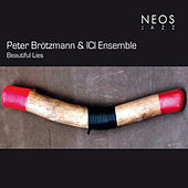 Beautiful Lies by Peter Brotzmann