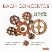 Bach: Concertos (BWV 1042,1044, 1052) and Cantata 'Non sa che sia Dolore' (BWV 209) by Various Artists