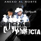 Perfecta by Anexo Al Norte