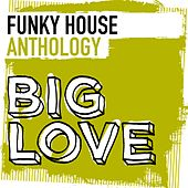 Big Love Funky House Anthology - EP by Various Artists