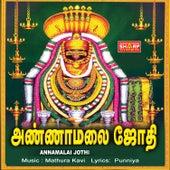Annamalai Jothi de Various Artists